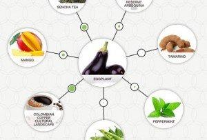 food pairing aubergine tamarin01