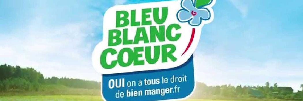 bleu-blanc-coeur-lin-1050xx350